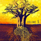 Roots, Music & Vizions 5