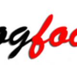 Hic Orbis e Blogfoolk mese Giugno