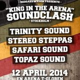 KiNG iN THE ARENA SOUNDCLASH 2014