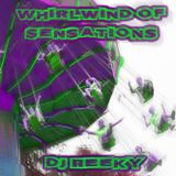 Whirlwind Of Sensations