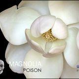 Magnolia Poison - Glammilk Summer Mix