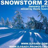 SNOWSTORM (January 2011)