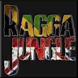 LION-UK - RAGGA_REGGAE- jungle dnb mix