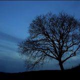 moonlight sonata 001