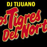 TIGRES MIX RANCHERAS DJ TIJUANO