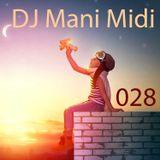 028- DJ Mani Midi: I Would Fly DJ Mix (Leap Day Bounce)