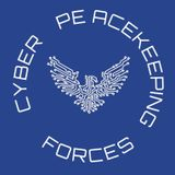 Interview Cyber Peacekeeping Forces on their concept of blockchain based cyber incident reporting