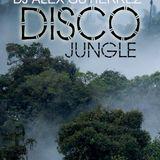 Disco Jungle ( Wild and Crazy ) DJ Alex Gutierrez