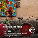 NAMAKEMONO RADIO - 14.07.2018 - DESCARGA LA ENDO - HOT SATURDAY LOUNGE SELECTION