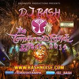 DJ Bash - The TomorrowLand Effect 2014
