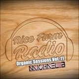 Organic Sessions Vol. 11 - Michael B DJ - DEM Digital - Flybeat Dance Records, Italy