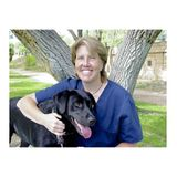 """Litter and Your Kitty: Why it Matters on """"Holistic Pet Care w/ Dr. O"""""""
