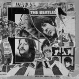 The Beatle Bug with Mick Francis - 04 / 02 /15