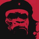 isuamadog - Gorilla Radio #2 (Sep 10, 2019)