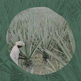 Monday Mixtape by Sharif Reyhani
