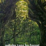 Shamanic Forest Chants - Ashoka tree
