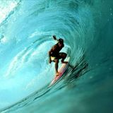 Wave: Week 8