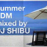 Summer ~EDM~