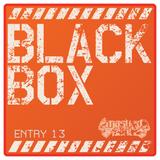 Black Box Entry 13
