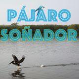 No 3 PÁJARO SOÑADOR / RADIO MIXANTEÑA