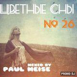 Цветные Сны #26 - Paul Meise