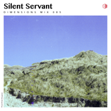 DIM085 - Silent Servant