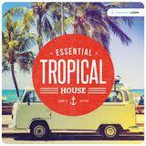 Tropical House -  Ông Bà Anh  ♥ - DJ Tùng Tee Mix