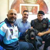 Canil da Guarda Municipal de Jundiaí realiza trabalho importante no combate à criminalidade