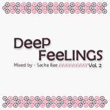 Deep feelings vol 2 - Mixed by Sacha Bae