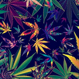 420/Earth Day Mix 2017