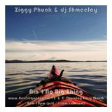 Ziggy Phunk & dj ShmeeJay - Ain't No Big Thing - 2017-07-13