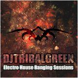 DjTribalGreen - Electro House Banging Sessions