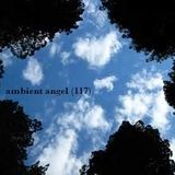 Ambient-Angel (117)