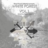 Bruno Mad - White Forest vol.1 (Once Upon a Forest Saga)