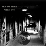 2016 Trip Hop_Hip Hop mix from Vinyl Digital