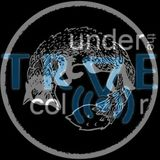 Under the TRVE Color XV: It was a summer...(feat. Kalle) - UP AIR (19.11.2015)