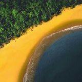 GROOVI BRASILIS - 2011