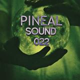 Kevin Masoni - Pineal Sound 022