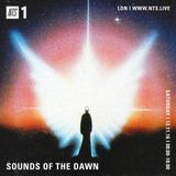 Sounds of The Dawn - 12th November 2016