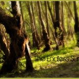 Zea in Dub - The Endless Summer