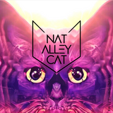 Nat Alley Cat - The Dusk Foreplay (Deep house/Melodic/Tech/Nu disco)