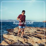 Electric Circus【Tropical & Chill】