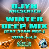 Djyn - Winter Deep Mix 2014 (Cat Star Rec.vol.2)