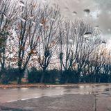 SOULeditor - Raindrops and falling leaves