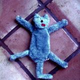 Funny Dead Cat With Broken Tail