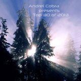 Andrei Cobra pres. Top 30 of 2013 - Live mixed