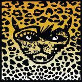Dj Norion @ Secret Sunday & Bar Leopard (Dark Progressive)