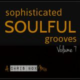 Sophisticated Soulful Grooves Volume 7 (May 2015)