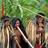 Guyana, Surinam y Guayana Francesa: Encuentro del sonido Africano, Hindú y la Selva Tropical