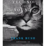 Techno Is The Sound 22 - Frank Rush